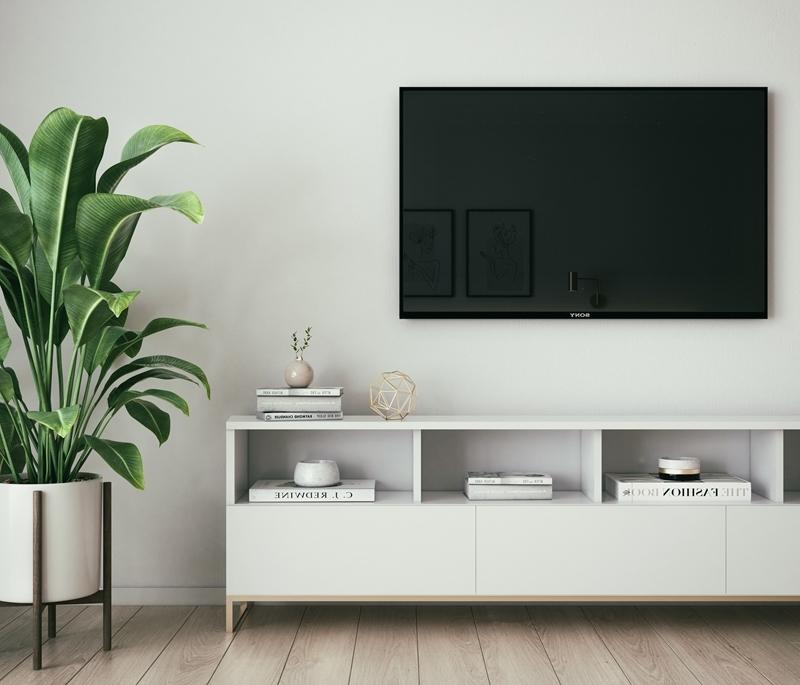 plante verte d intérieur nettoyer ecran tele meuble blanc