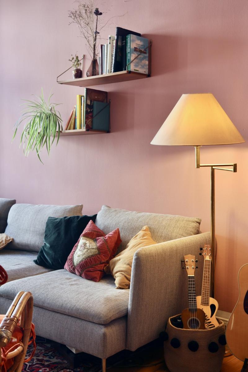 plantes d intérieur facile d entretien plante araignée décore la pièce