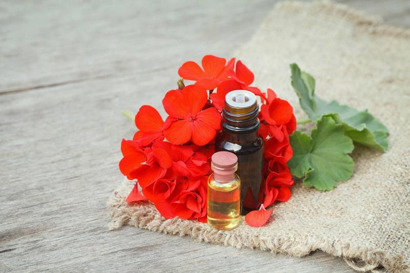 shampoing anti chute de cheveux huile et fleur de geranium