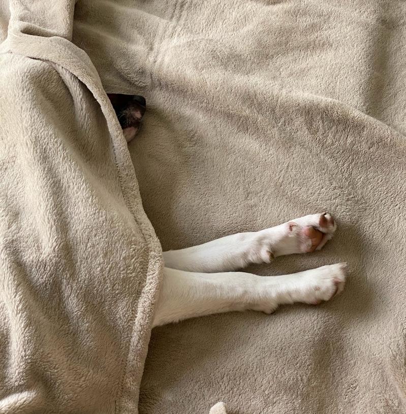 sommeil lit repos conseils traitement gueule de bois