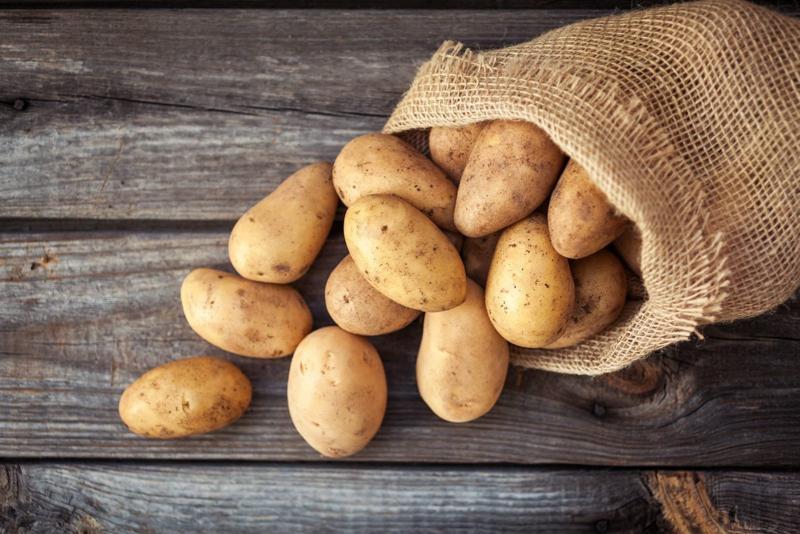 comment conserver les pommes de terre sans qu elles germent pommes de terre dans un sac