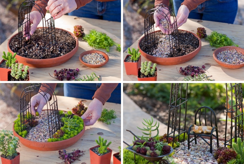 comment créer un mini jardin de plantes grasses tutoriel facile