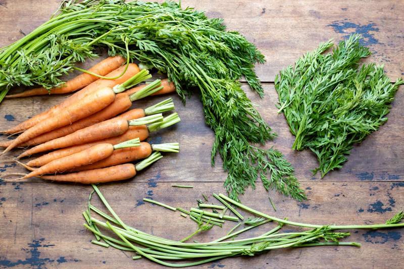 cuisiner les fanes de carottes séparer les feuilles des carottes
