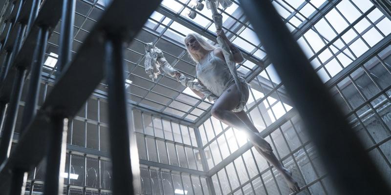 déguisement de harley quinn harley quinn dans son cage