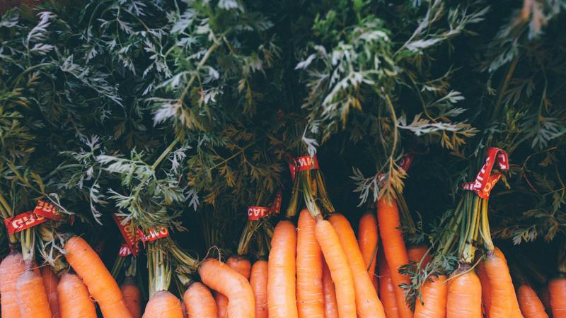 fanes de carottes beaucoup de bottes de carottes et ses fanes