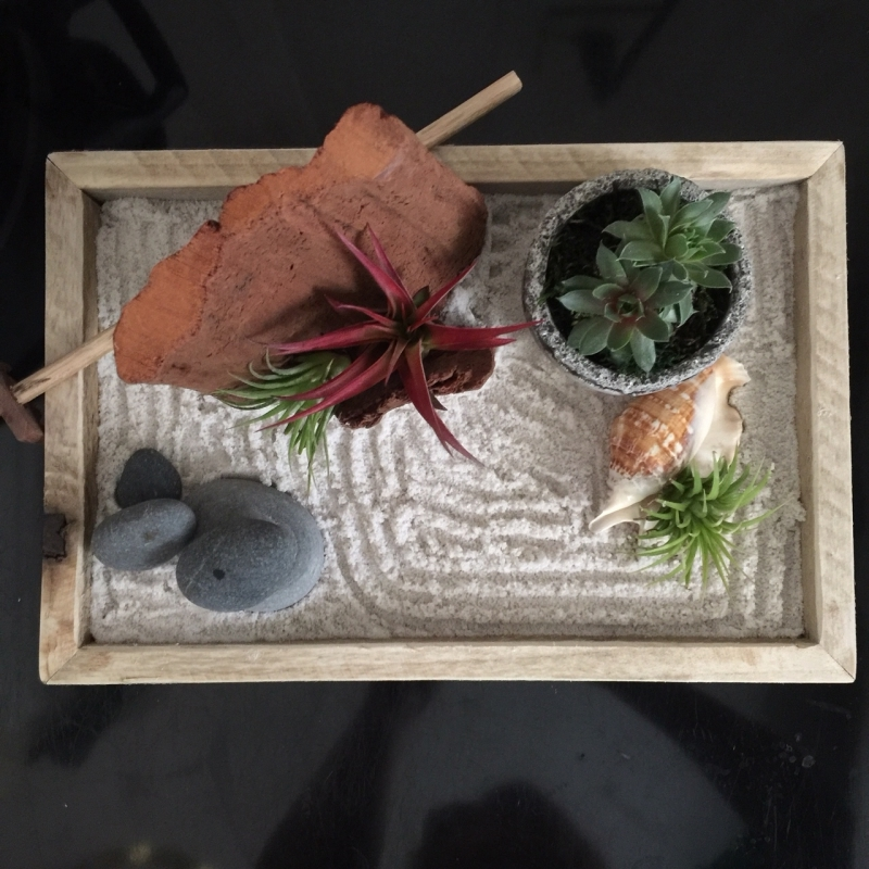 jardin japonais miniature sable pierre plantes aériennes succulentes