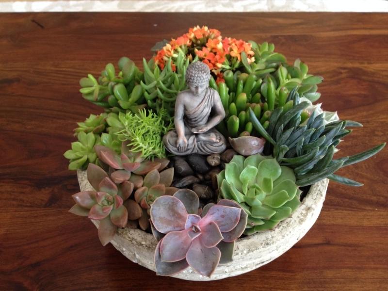 jardin zen miniature plante grasse a fleur contenant rond