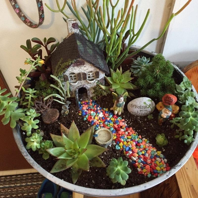 massif plantes grasses en miniature figurine fée maison