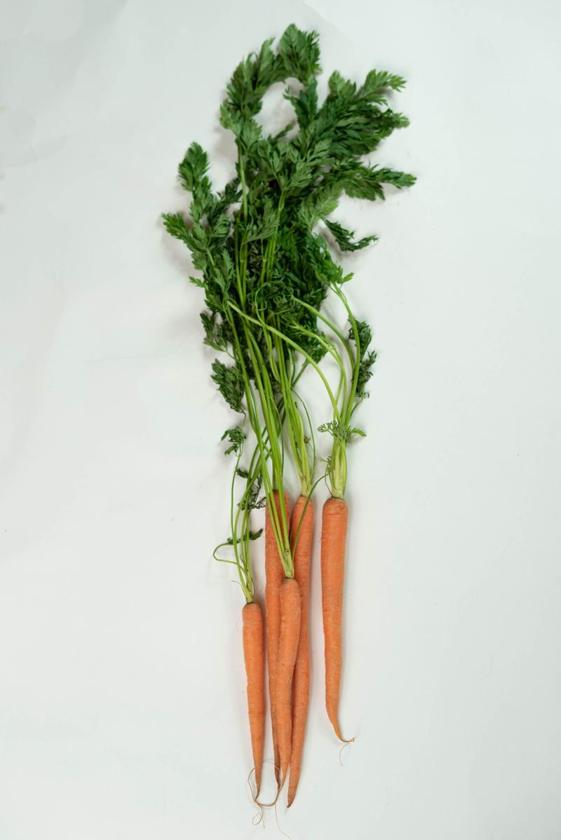 recette fanes de carottes une botte de quelques carottes