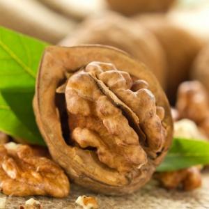 La saison des noix - quand et comment les ramasser et conserver
