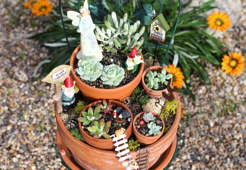 succulentes plantes décoratives diy mini jardin pot terre cuite