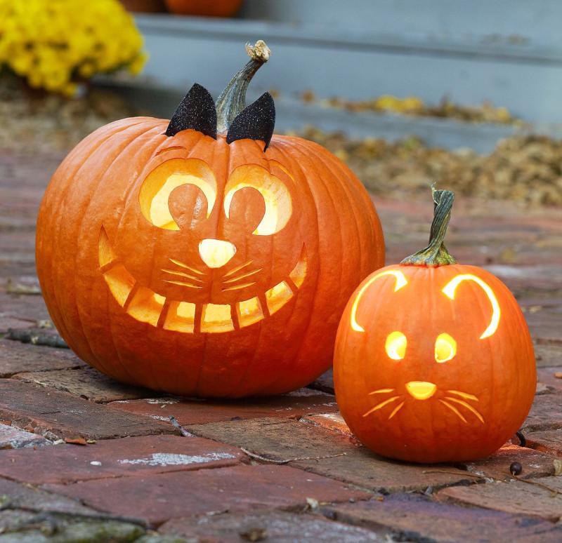 tete de citrouille de chat et souris souriante déco amusante pour les enfants